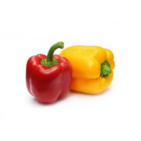 Peperone Rosso/Giallo Bio