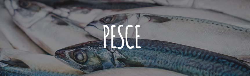 Pesce