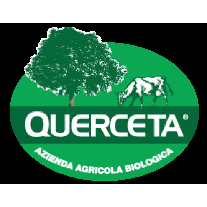 Querceta