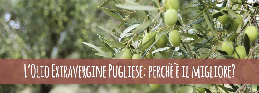 L'Olio Extravergine Pugliese: perchè è il migliore?